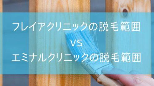フレイアクリニックとエミナルクリニックの脱毛範囲を比較